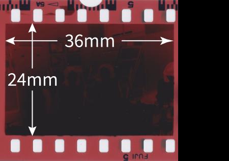 フィルムのサイズ